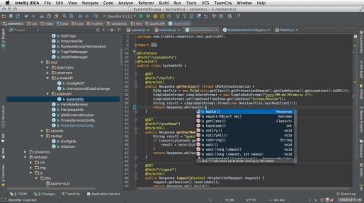IntelliJ_IDEA_12.0.4_Ultimate
