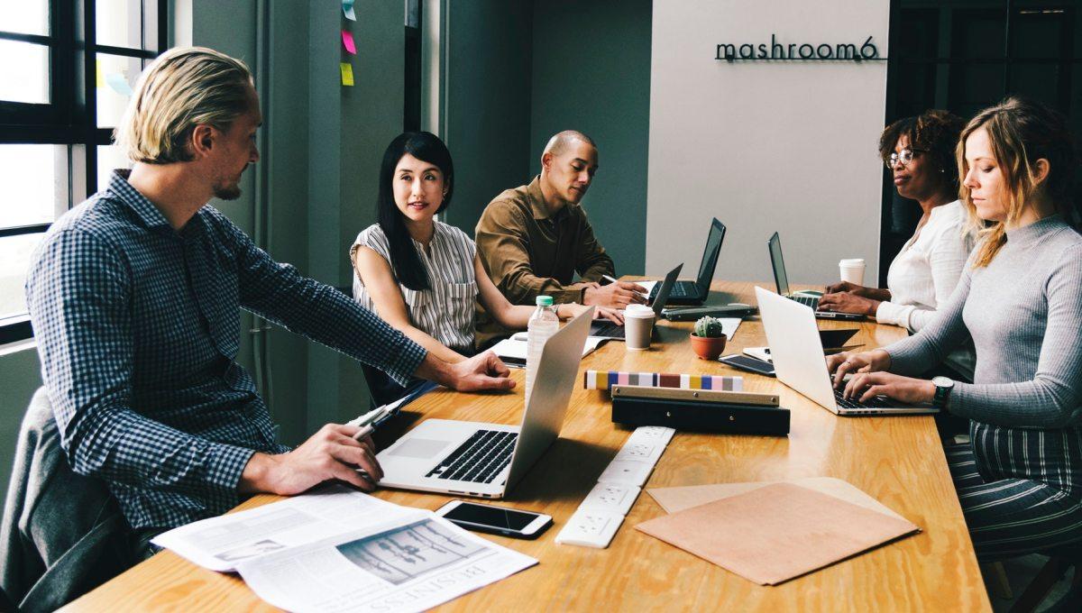 Nên đi làm công ty lớn hay nhỏ; outsource, product hay startup?