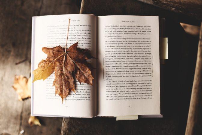 Mỗi tháng một cuốn sách – Những sách hay mình đã đọc trong năm 2018 – Phần 1
